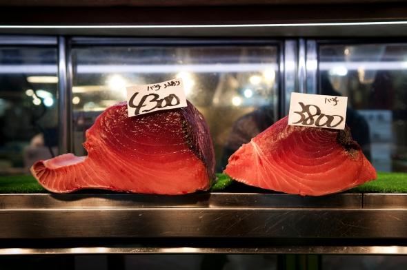 Tokyo Fish Market (2)