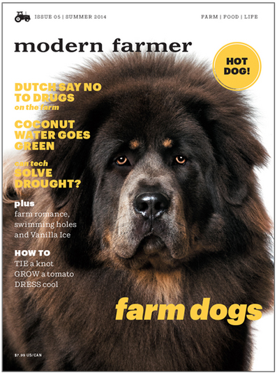 Modern farmer dog cover