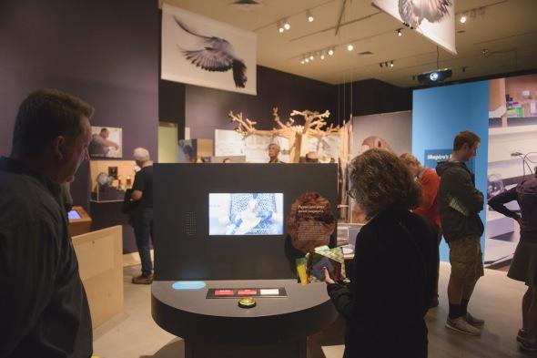 Natural Histroy Museum of Utah Darwin's Pigeons exhibition