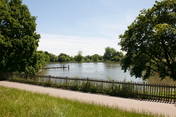 The men's swimming pond at Hampstead Heath, London
